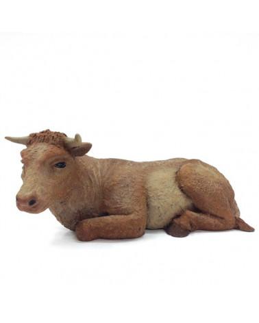 Ox 19-23 cm.