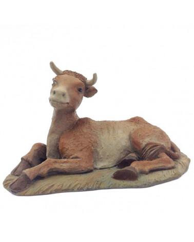 Ox 24-28 cm.
