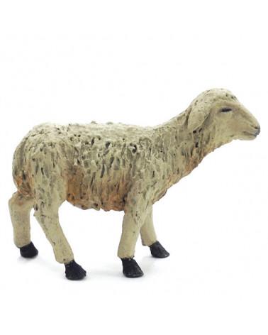 Lamm stand 16 bis 18 cm.