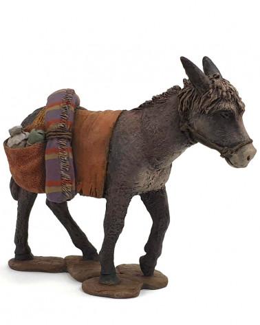 Donkey charged 20cm.