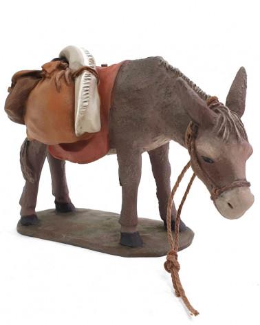 Donkey charged 17cm.