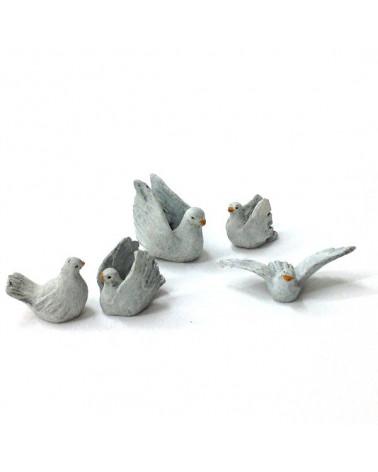 Fünf Tauben