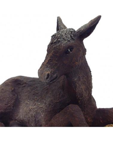 Mule 11-12 cm.