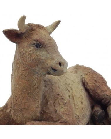 Ox 11-12 cm.